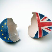 Brexit egg